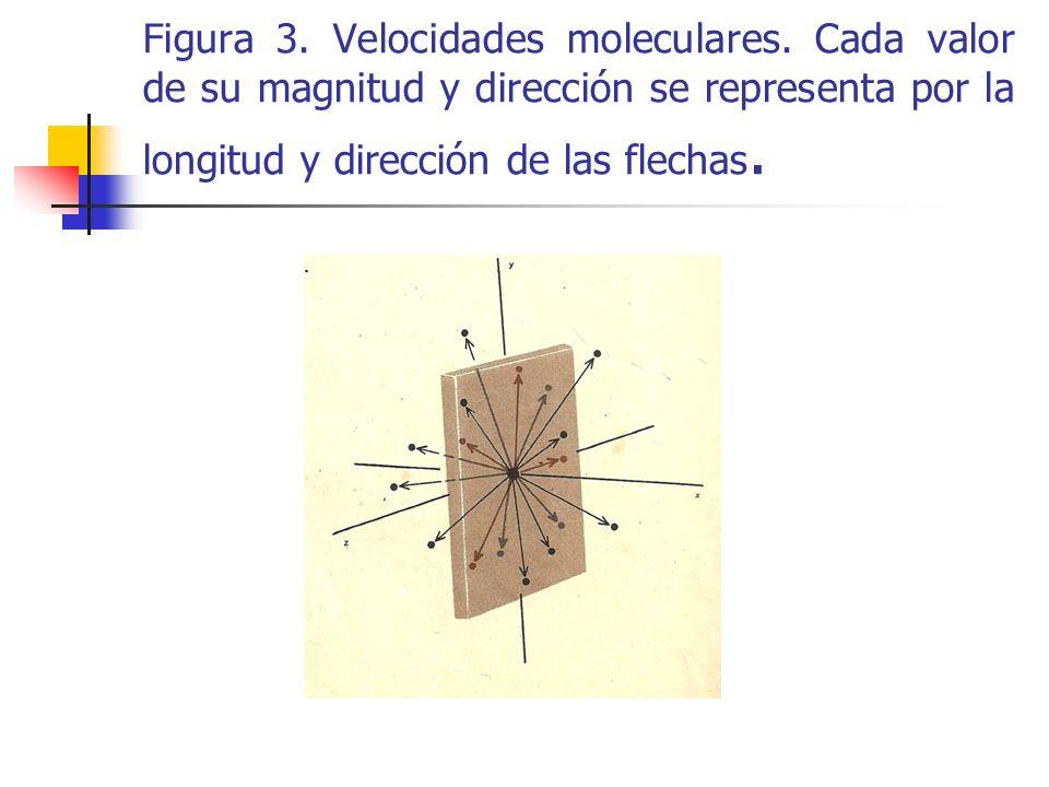 Puesto que los gases se comportan en forma similar en todas direcciones, es decir desde este punto de vista isótropo los diagramas análogos a los de la figura 3, para un número suficientemente grande de moléculas, deben ser los mismos para todas las direcciones.
