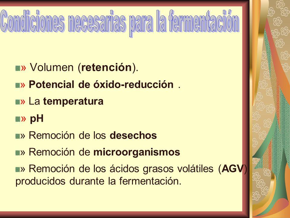 » Volumen (retención). » Potencial de óxido-reducción. » La temperatura » pH » Remoción de los desechos » Remoción de microorganismos » Remoción de lo