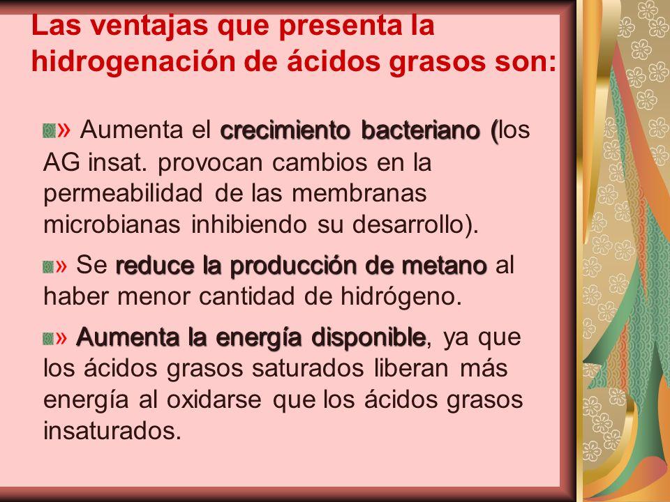 Las ventajas que presenta la hidrogenación de ácidos grasos son: crecimiento bacteriano ( » Aumenta el crecimiento bacteriano (los AG insat. provocan