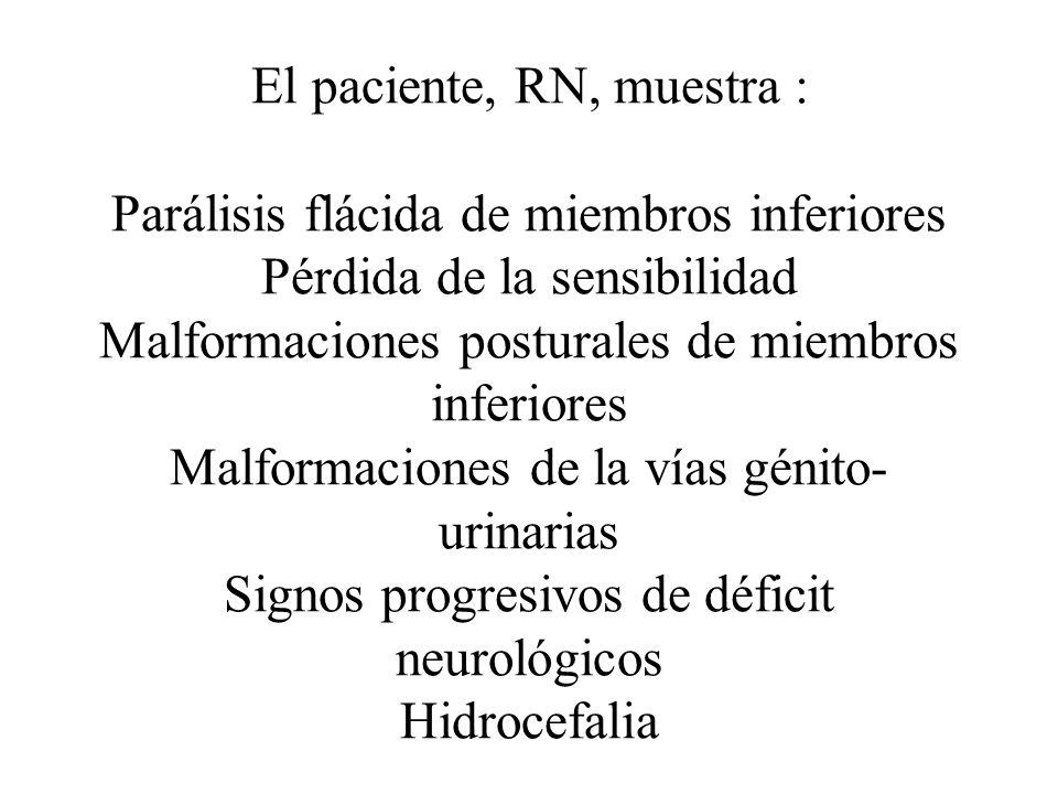 El paciente, RN, muestra : Parálisis flácida de miembros inferiores Pérdida de la sensibilidad Malformaciones posturales de miembros inferiores Malfor