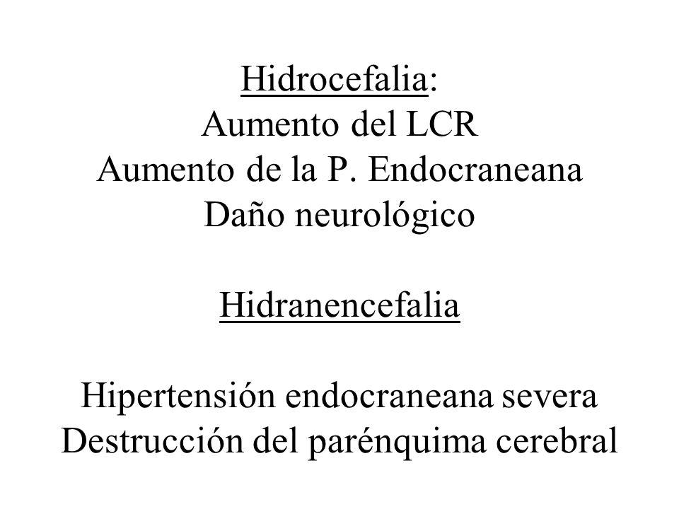 Hidrocefalia: Aumento del LCR Aumento de la P. Endocraneana Daño neurológico Hidranencefalia Hipertensión endocraneana severa Destrucción del parénqui