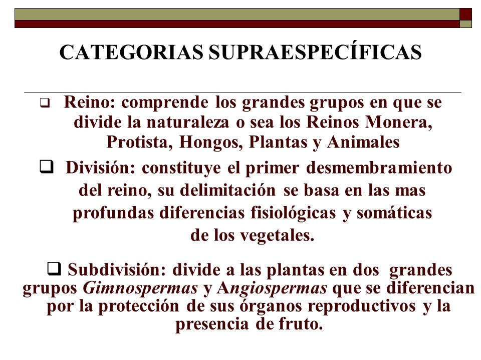 CATEGORIAS SUPRAESPECÍFICAS Reino: comprende los grandes grupos en que se divide la naturaleza o sea los Reinos Monera, Protista, Hongos, Plantas y An