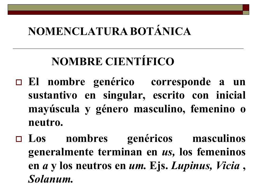 NOMENCLATURA BOTÁNICA El nombre genérico corresponde a un sustantivo en singular, escrito con inicial mayúscula y género masculino, femenino o neutro.