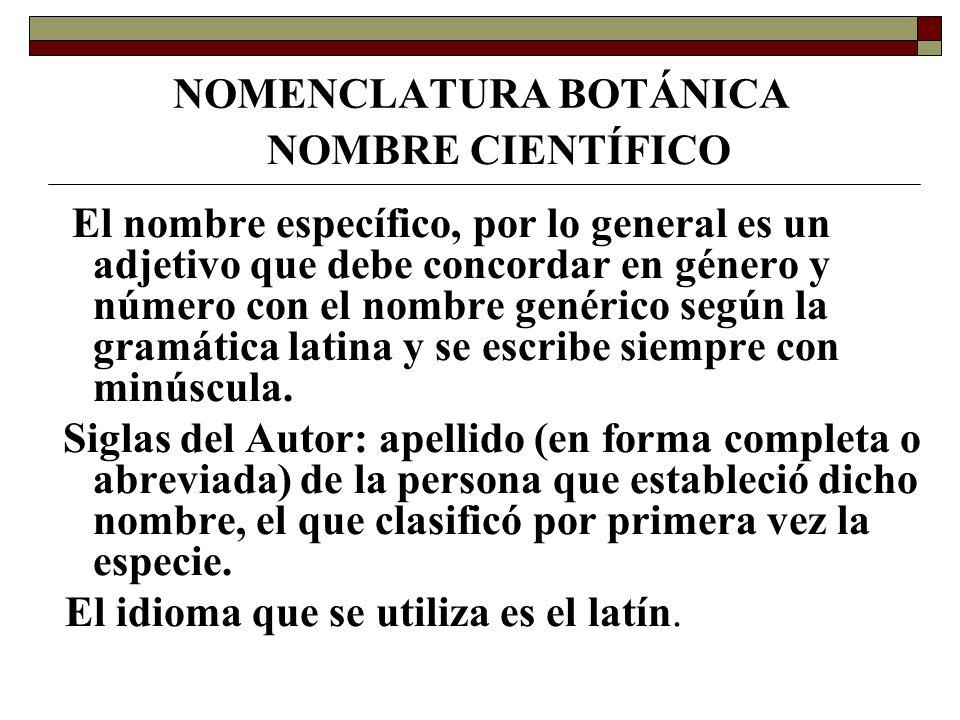 NOMENCLATURA BOTÁNICA Ejemplo: Erytrina crista-galli L.