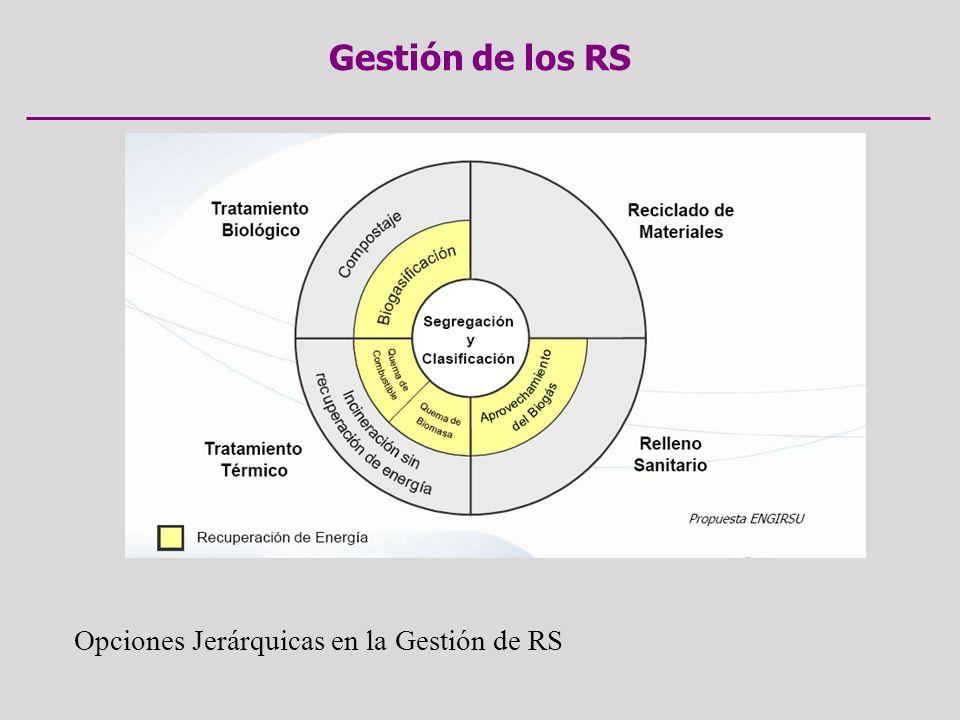 Gestión de los RS Opciones Jerárquicas en la Gestión de RS