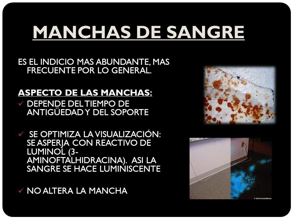 MANCHAS DE SANGRE ES EL INDICIO MAS ABUNDANTE, MAS FRECUENTE POR LO GENERAL.