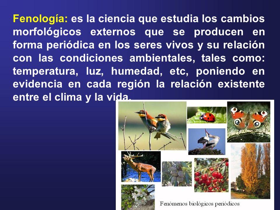 SimbologíaDescripción O (cero)órganos en reposo (inactividad vegetativa).