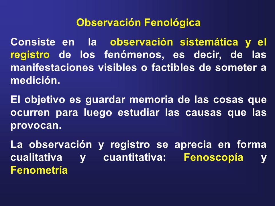 Fenoscopía: consiste en observación y registro de los procesos; aprecia en forma cualitativa el fenómeno.