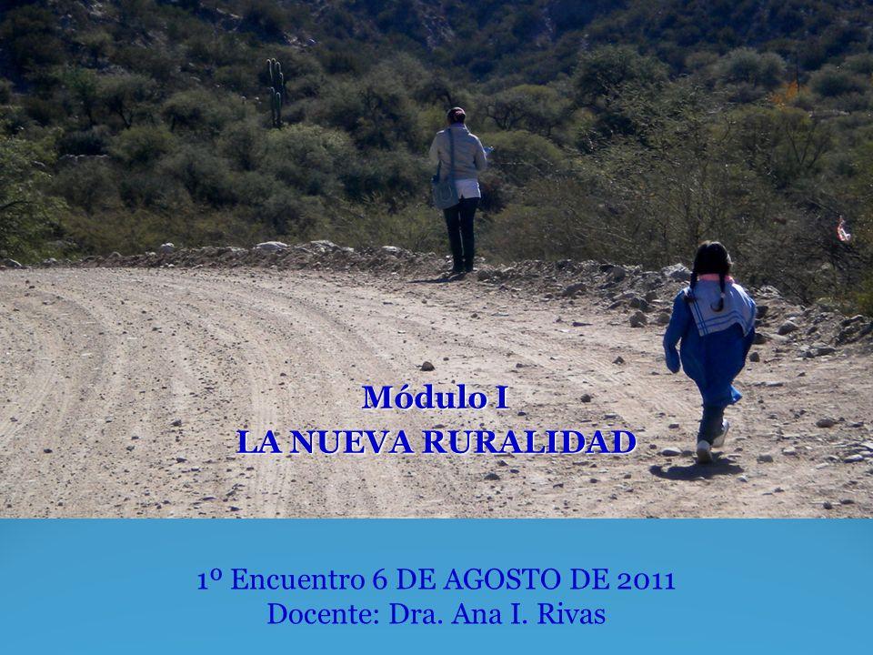 Módulo I LA NUEVA RURALIDAD 1º Encuentro 6 DE AGOSTO DE 2011 Docente: Dra. Ana I. Rivas