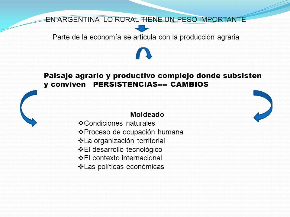 EN ARGENTINA LO RURAL TIENE UN PESO IMPORTANTE Parte de la economía se articula con la producción agraria Paisaje agrario y productivo complejo donde