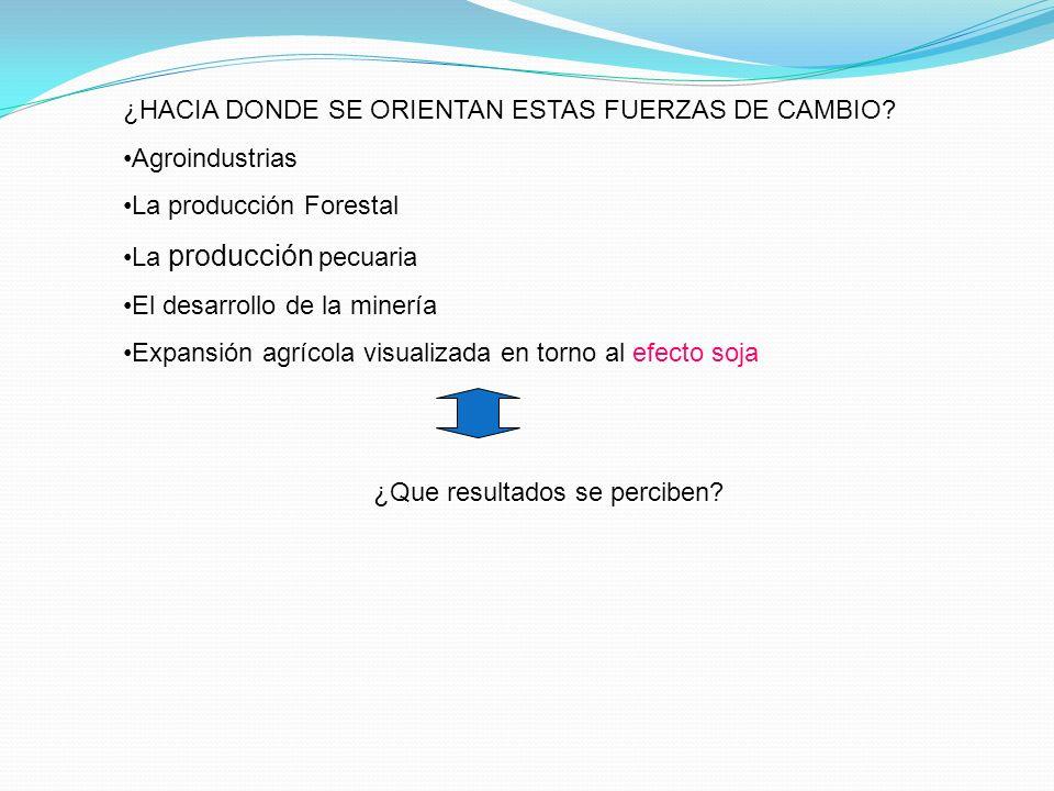 ¿HACIA DONDE SE ORIENTAN ESTAS FUERZAS DE CAMBIO? Agroindustrias La producción Forestal La producción pecuaria El desarrollo de la minería Expansión a