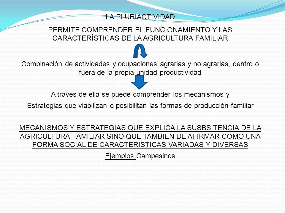 LA PLURIACTIVIDAD PERMITE COMPRENDER EL FUNCIONAMIENTO Y LAS CARACTERÍSTICAS DE LA AGRICULTURA FAMILIAR Combinación de actividades y ocupaciones agrar