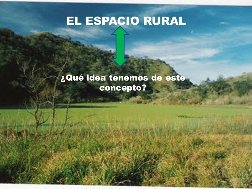 Argentina Utiliza una acepción de lo rural acuñada en Francia en el siglo XIX, cuyo criterio principal de diferenciación rural-urbana es la cantidad de habitantes por localidad.