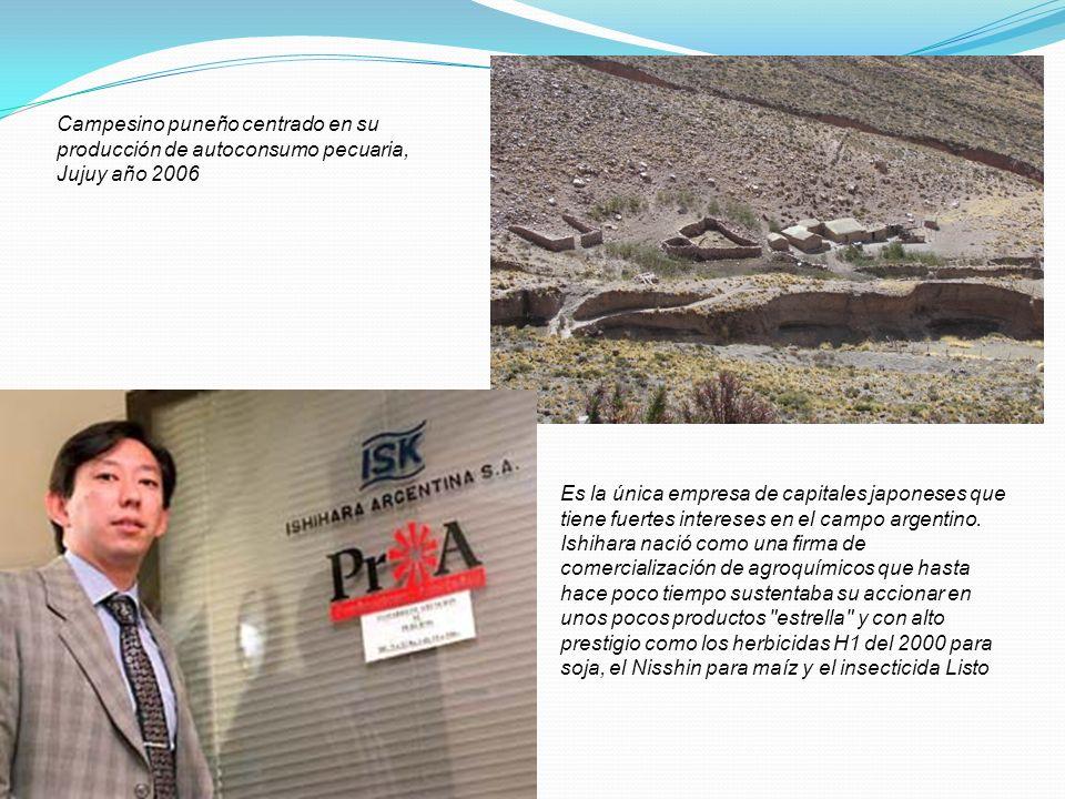Es la única empresa de capitales japoneses que tiene fuertes intereses en el campo argentino. Ishihara nació como una firma de comercialización de agr