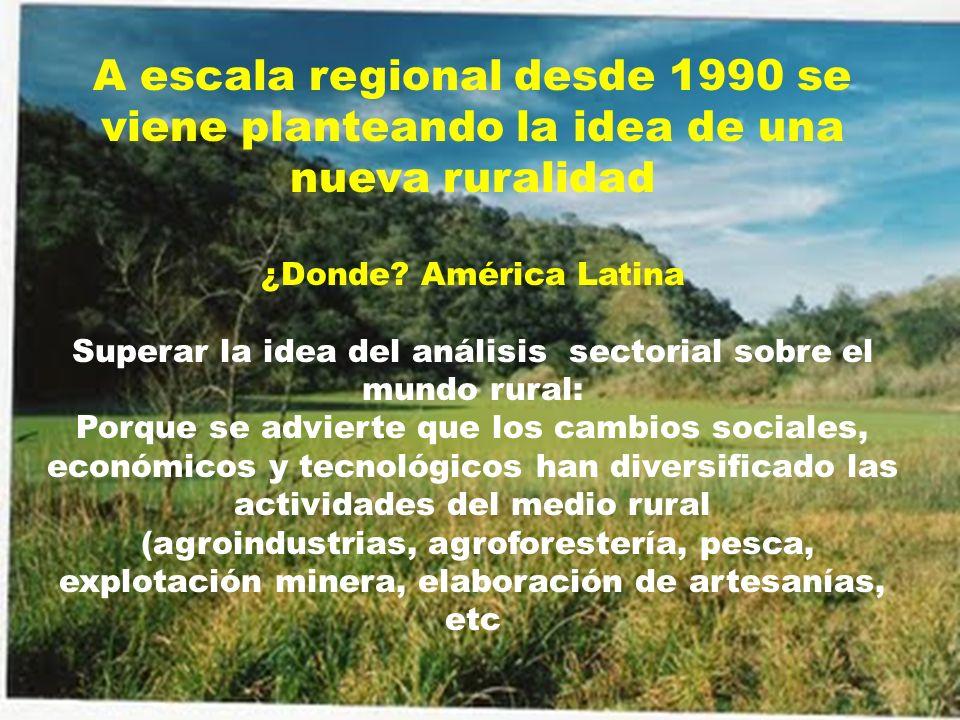 A escala regional desde 1990 se viene planteando la idea de una nueva ruralidad ¿Donde? América Latina Superar la idea del análisis sectorial sobre el