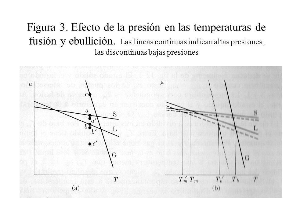 La línea de BD es casi vertical porque el punto de fusión de un sólido no es muy sensible a los cambios en la presión.