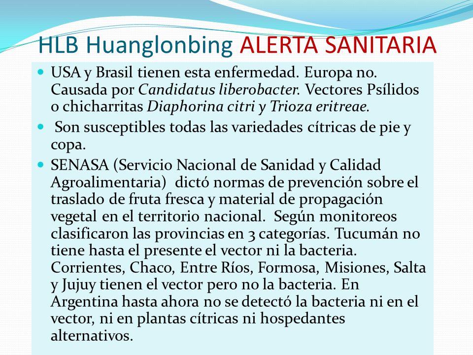 HLB Huanglonbing ALERTA SANITARIA USA y Brasil tienen esta enfermedad. Europa no. Causada por Candidatus liberobacter. Vectores Psílidos o chicharrita