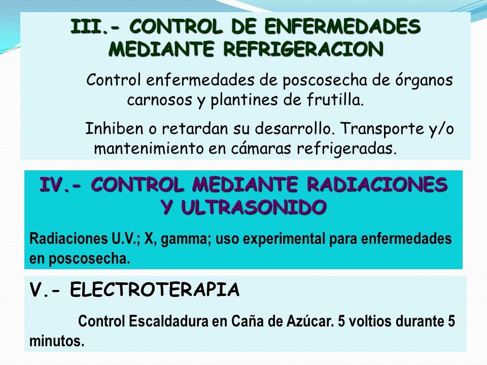 III.- CONTROL DE ENFERMEDADES MEDIANTE REFRIGERACION Control enfermedades de poscosecha de órganos carnosos y plantines de frutilla. Inhiben o retarda