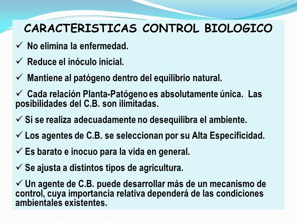 CARACTERISTICAS CONTROL BIOLOGICO No elimina la enfermedad. Reduce el inóculo inicial. Mantiene al patógeno dentro del equilibrio natural. Cada relaci