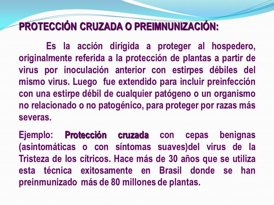 PROTECCIÓN CRUZADA O PREIMNUNIZACIÓN: Es la acción dirigida a proteger al hospedero, originalmente referida a la protección de plantas a partir de vir