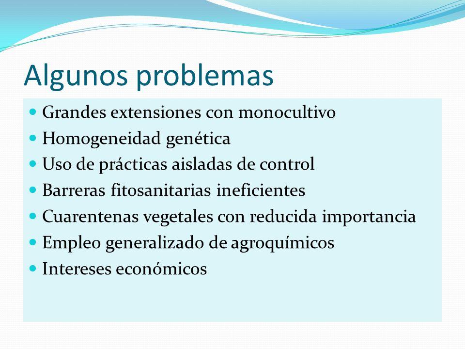 Algunos problemas Grandes extensiones con monocultivo Homogeneidad genética Uso de prácticas aisladas de control Barreras fitosanitarias ineficientes