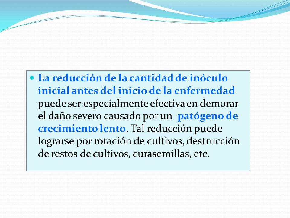 La reducción de la cantidad de inóculo inicial antes del inicio de la enfermedad puede ser especialmente efectiva en demorar el daño severo causado po