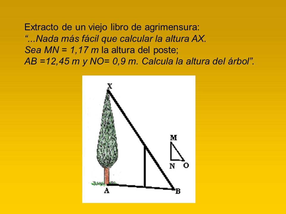 Extracto de un viejo libro de agrimensura:...Nada más fácil que calcular la altura AX. Sea MN = 1,17 m la altura del poste; AB =12,45 m y NO= 0,9 m. C