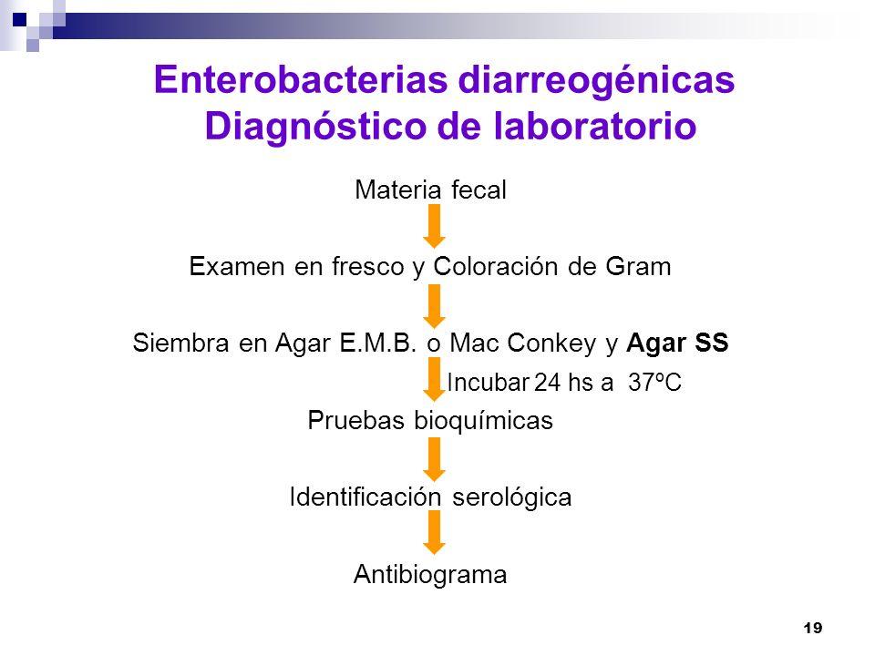 19 Enterobacterias diarreogénicas Diagnóstico de laboratorio Materia fecal Examen en fresco y Coloración de Gram Siembra en Agar E.M.B. o Mac Conkey y