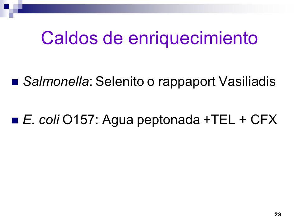 23 Caldos de enriquecimiento Salmonella: Selenito o rappaport Vasiliadis E. coli O157: Agua peptonada +TEL + CFX