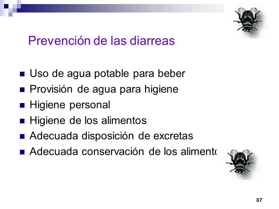 37 Prevención de las diarreas Uso de agua potable para beber Provisión de agua para higiene Higiene personal Higiene de los alimentos Adecuada disposi