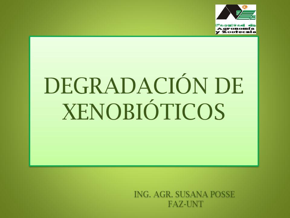DEGRADACIÓN DE XENOBIÓTICOS ING. AGR. SUSANA POSSE FAZ-UNT
