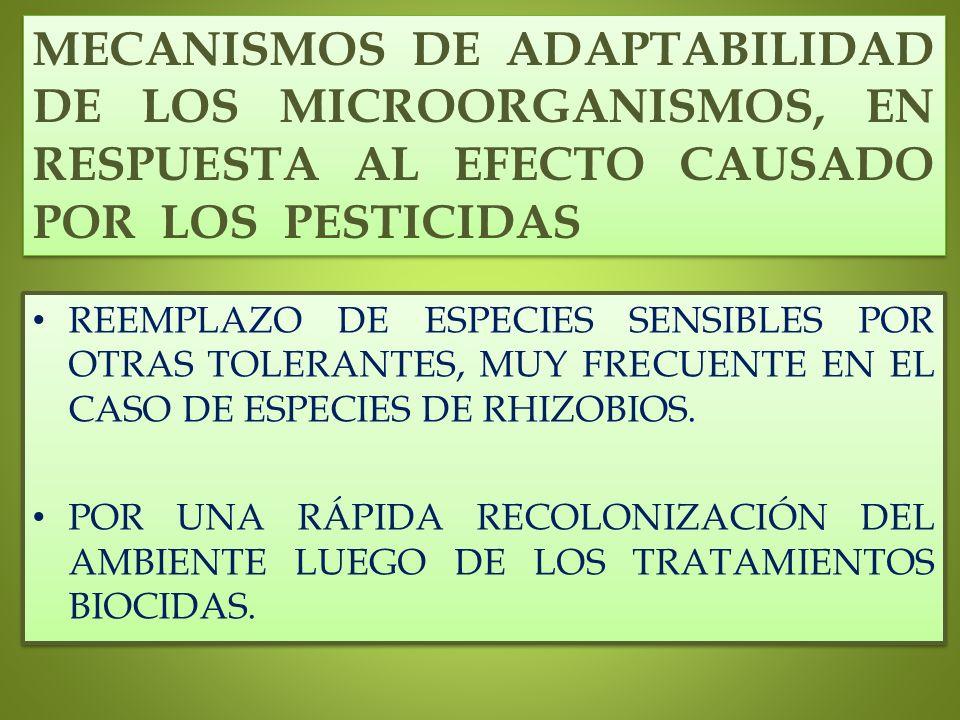 MECANISMOS DE ADAPTABILIDAD DE LOS MICROORGANISMOS, EN RESPUESTA AL EFECTO CAUSADO POR LOS PESTICIDAS REEMPLAZO DE ESPECIES SENSIBLES POR OTRAS TOLERA