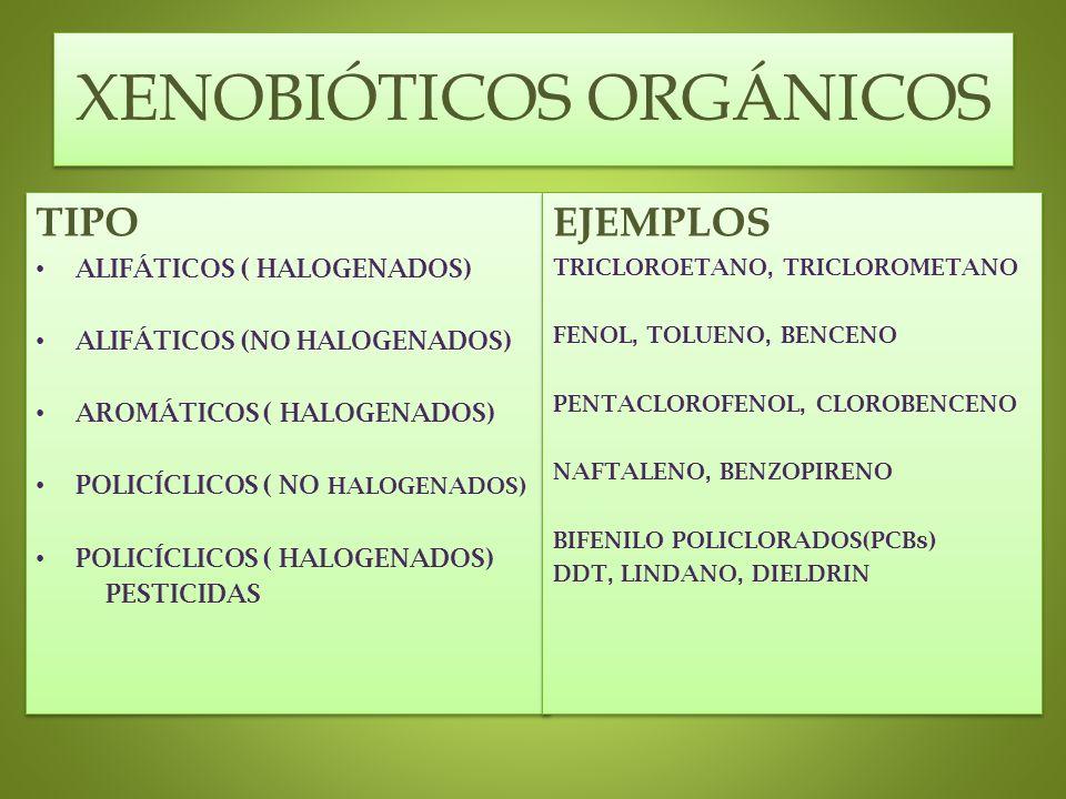 XENOBIÓTICOS ORGÁNICOS TIPO ALIFÁTICOS ( HALOGENADOS) ALIFÁTICOS (NO HALOGENADOS) AROMÁTICOS ( HALOGENADOS) POLICÍCLICOS ( NO HALOGENADOS) POLICÍCLICO