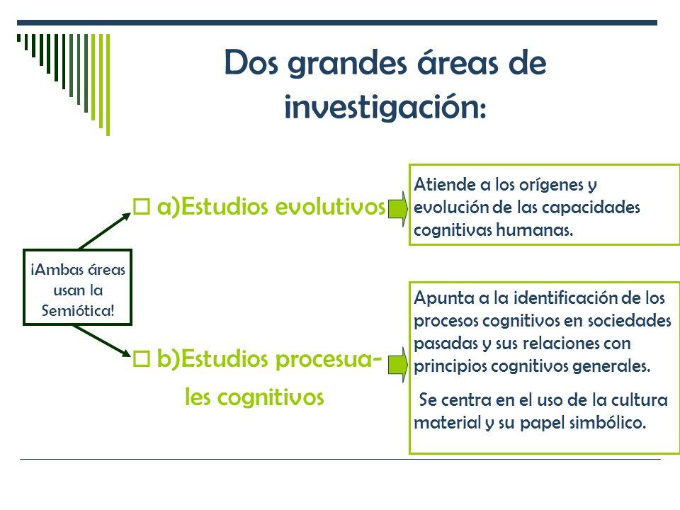 Dos grandes áreas de investigación: a)Estudios evolutivos b)Estudios procesua- les cognitivos Atiende a los orígenes y evolución de las capacidades co