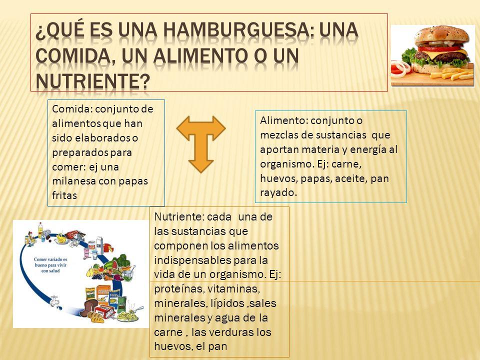 Alimento: conjunto o mezclas de sustancias que aportan materia y energía al organismo. Ej: carne, huevos, papas, aceite, pan rayado. Comida: conjunto