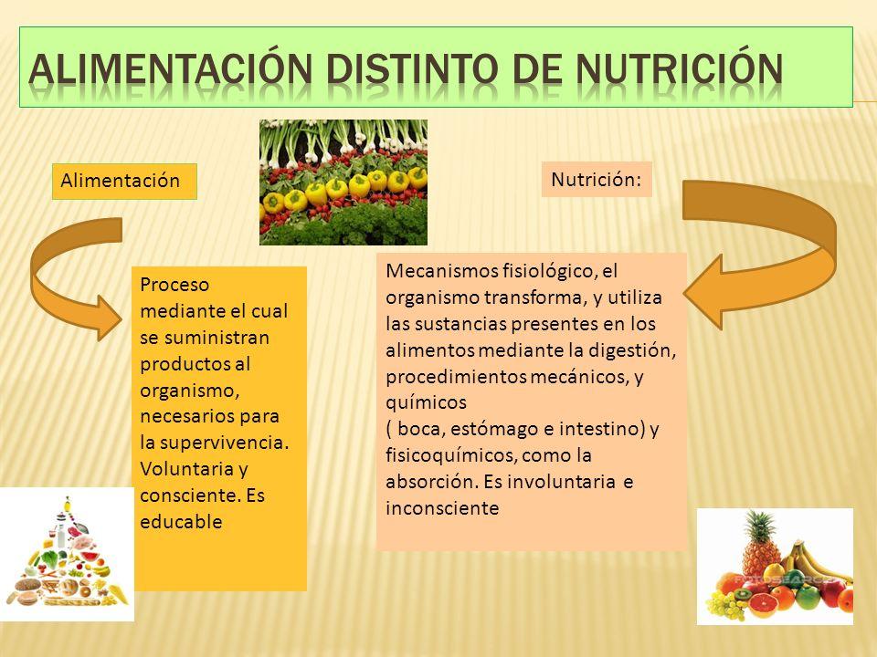 Proceso mediante el cual se suministran productos al organismo, necesarios para la supervivencia. Voluntaria y consciente. Es educable Alimentación Nu