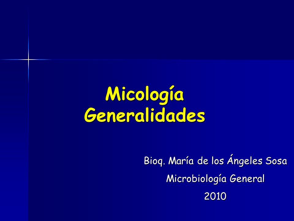 Micología Generalidades Bioq. María de los Ángeles Sosa Microbiología General 2010