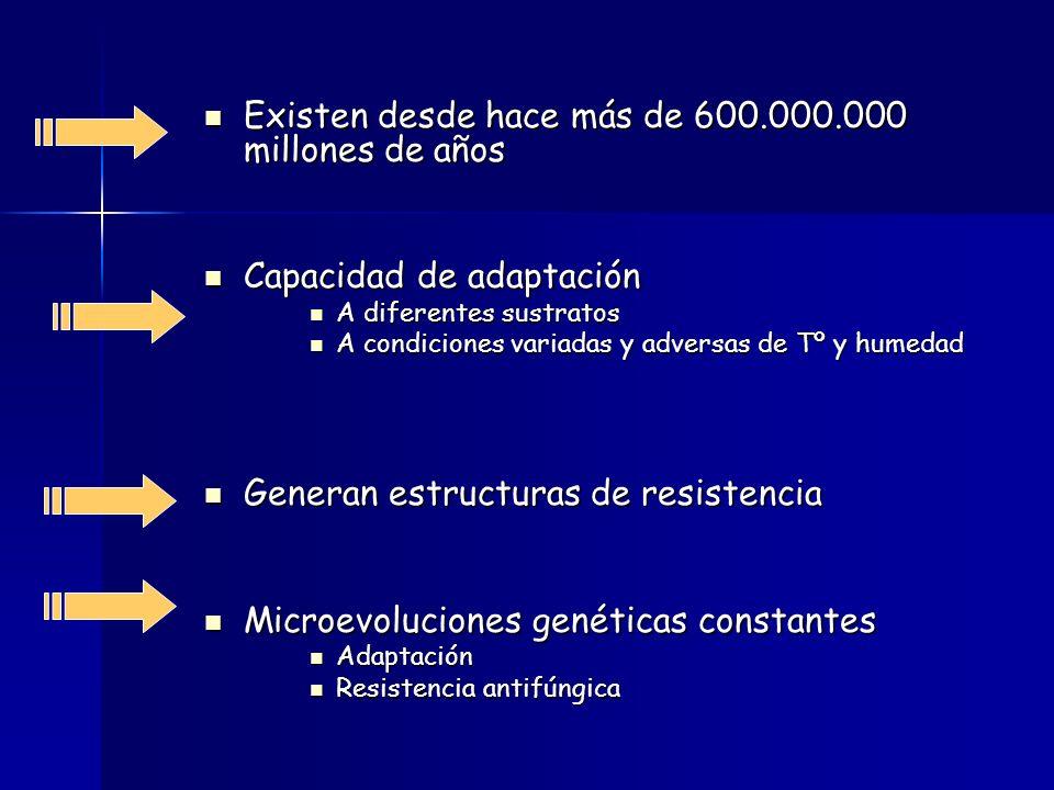 Existen desde hace más de 600.000.000 millones de años Existen desde hace más de 600.000.000 millones de años Capacidad de adaptación Capacidad de adaptación A diferentes sustratos A diferentes sustratos A condiciones variadas y adversas de Tº y humedad A condiciones variadas y adversas de Tº y humedad Generan estructuras de resistencia Generan estructuras de resistencia Microevoluciones genéticas constantes Microevoluciones genéticas constantes Adaptación Adaptación Resistencia antifúngica Resistencia antifúngica