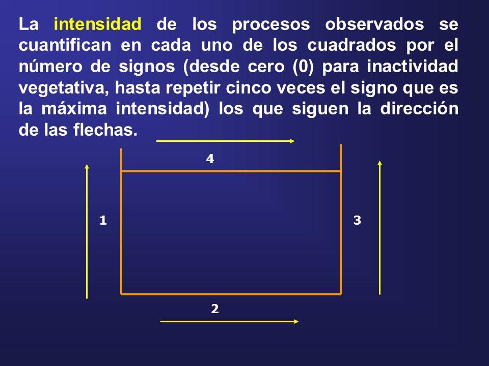 La intensidad de los procesos observados se cuantifican en cada uno de los cuadrados por el número de signos (desde cero (0) para inactividad vegetati