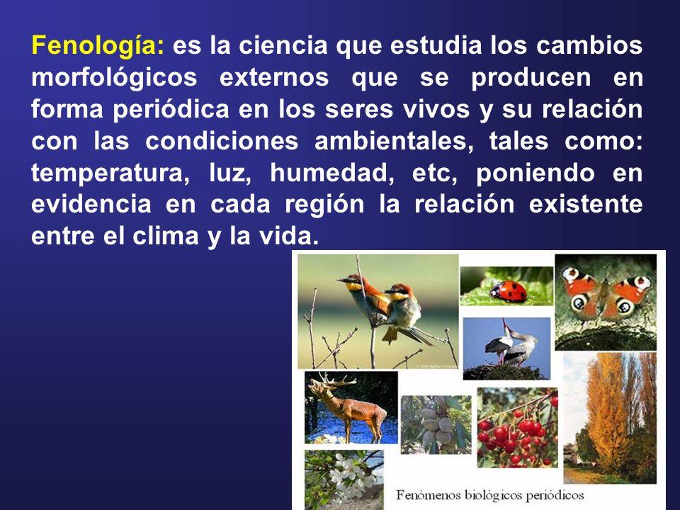 Fenología: es la ciencia que estudia los cambios morfológicos externos que se producen en forma periódica en los seres vivos y su relación con las con