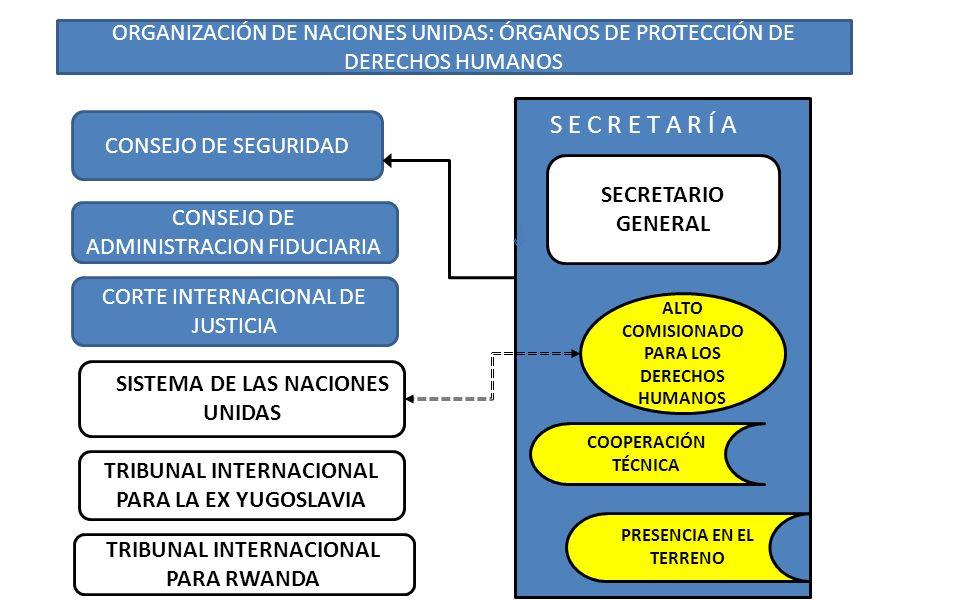 ORGANIZACIÓN DE NACIONES UNIDAS: ÓRGANOS DE PROTECCIÓN DE DERECHOS HUMANOS SESEses CONSEJO DE SEGURIDAD CONSEJO DE ADMINISTRACION FIDUCIARIA CORTE INT
