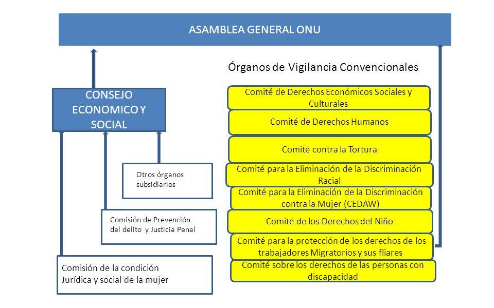 ASAMBLEA GENERAL ONU CONSEJO ECONOMICO Y SOCIAL Comité de Derechos Económicos Sociales y Culturales Comité de Derechos Humanos Comité contra la Tortur