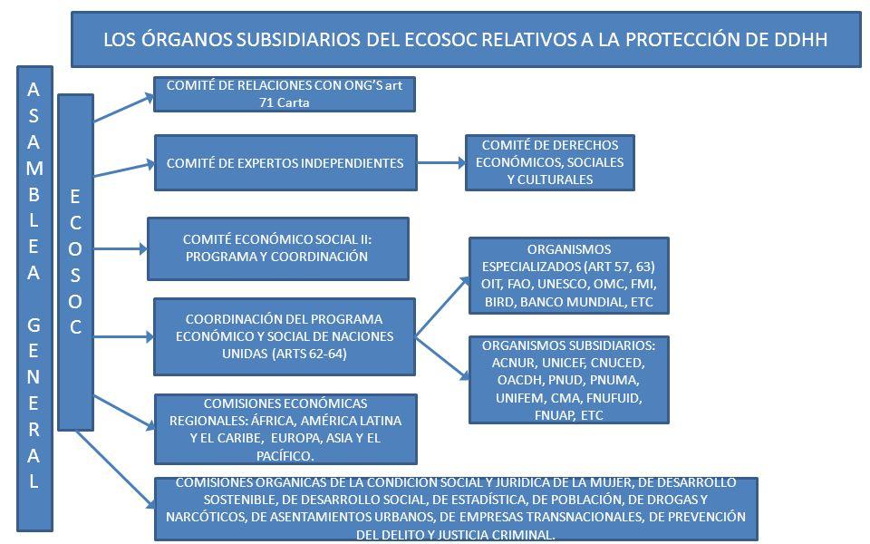 LOS ÓRGANOS SUBSIDIARIOS DEL ECOSOC RELATIVOS A LA PROTECCIÓN DE DDHH ASAMBLEA GENERALASAMBLEA GENERAL ECOSOCECOSOC COMITÉ DE RELACIONES CON ONGS art