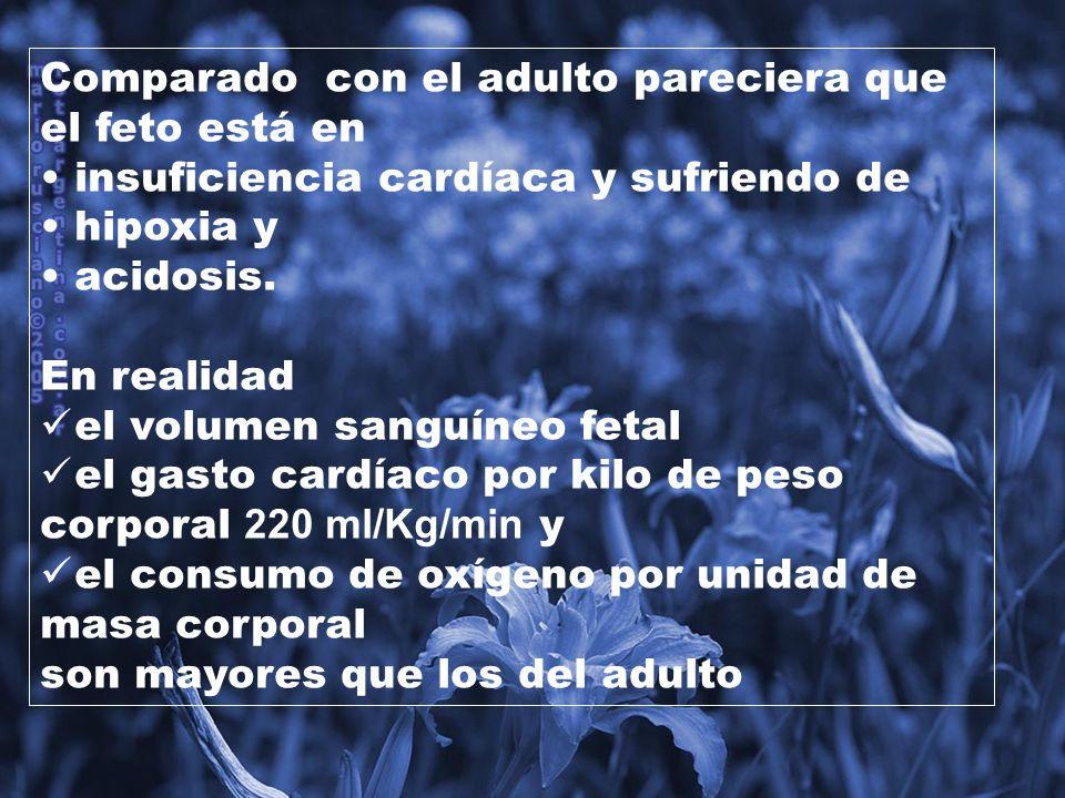 HEMODINÁMICA FETAL: El feto tiene: baja presión de oxígeno alta pco2 ph bajo.