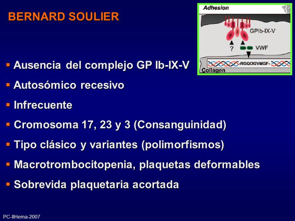 BERNARD SOULIER Ausencia del complejo GP Ib-IX-V Ausencia del complejo GP Ib-IX-V Autosómico recesivo Autosómico recesivo Infrecuente Infrecuente Crom