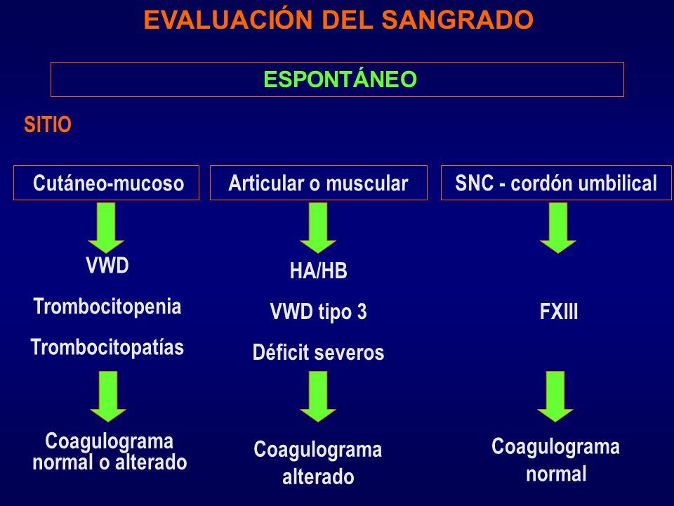 ESPONTÁNEO EVALUACIÓN DEL SANGRADO Cutáneo-mucoso SITIO FXIII Articular o muscularSNC - cordón umbilical VWD Trombocitopenia Trombocitopatías HA/HB VW