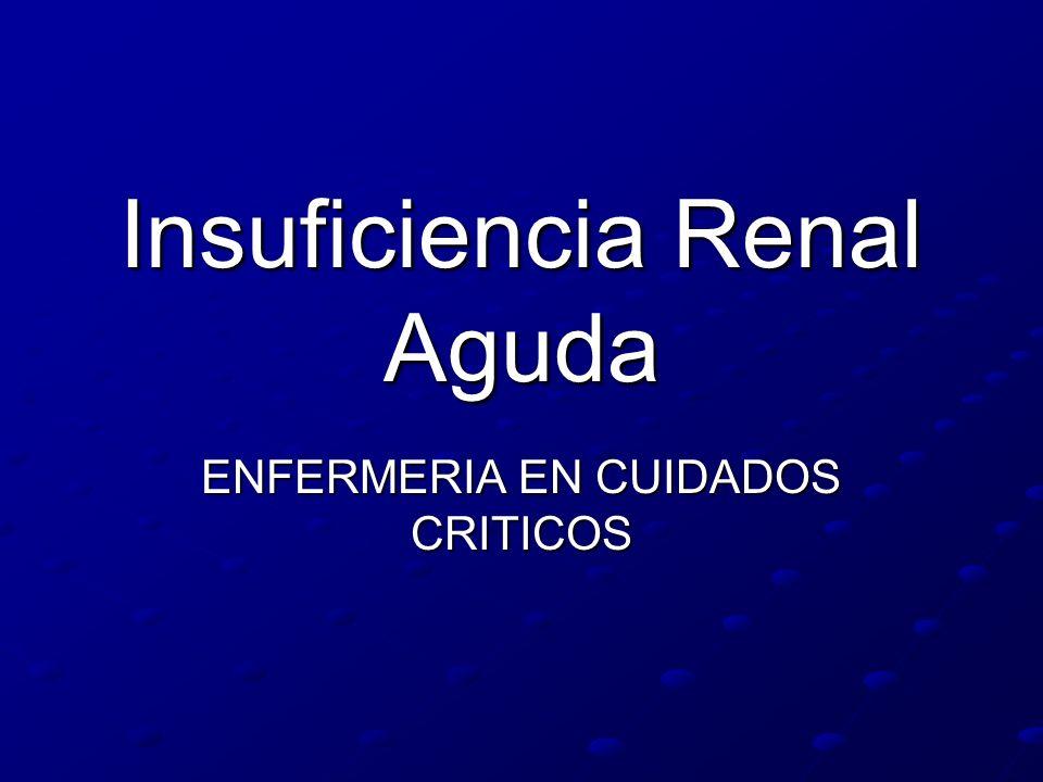 Insuficiencia Renal Aguda ENFERMERIA EN CUIDADOS CRITICOS