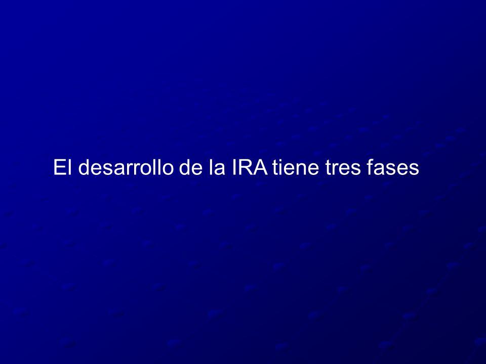 El desarrollo de la IRA tiene tres fases