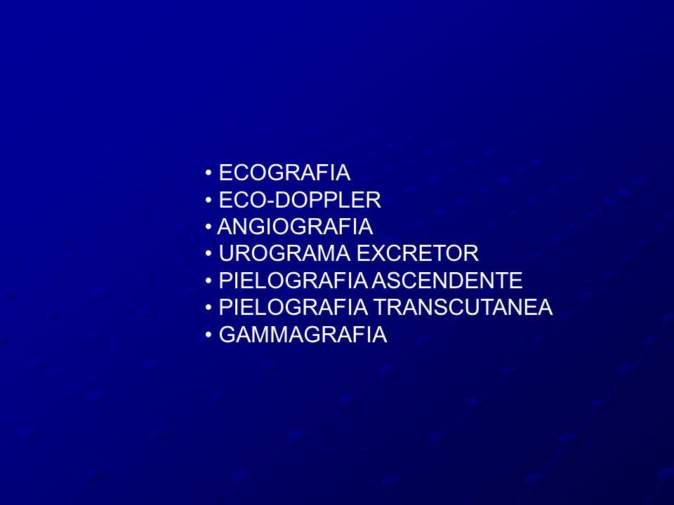 ECOGRAFIA ECO-DOPPLER ANGIOGRAFIA UROGRAMA EXCRETOR PIELOGRAFIA ASCENDENTE PIELOGRAFIA TRANSCUTANEA GAMMAGRAFIA