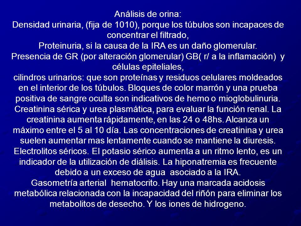 Análisis de orina: Densidad urinaria, (fija de 1010), porque los túbulos son incapaces de concentrar el filtrado, Proteinuria, si la causa de la IRA e